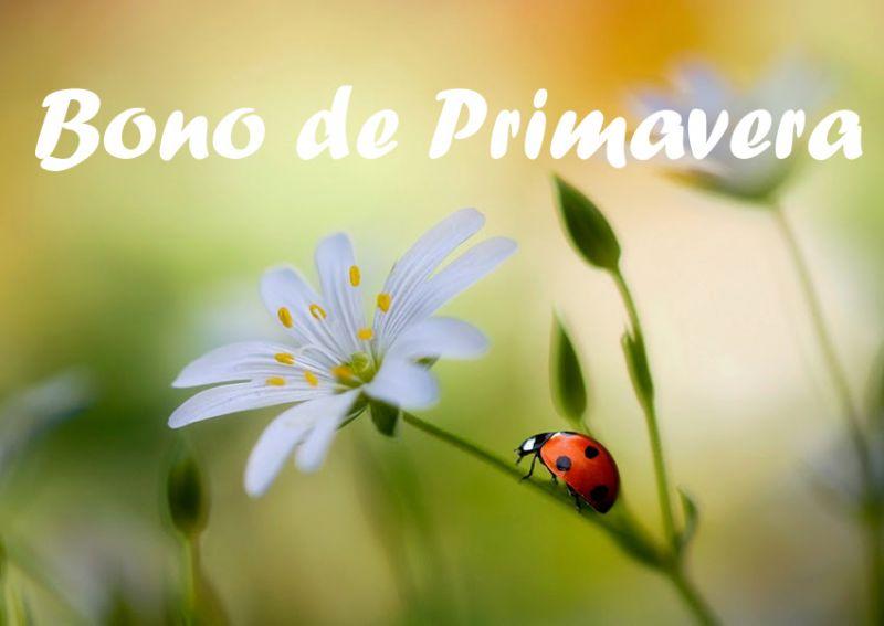 BONO DE PRIMAVERA